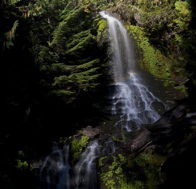 8930_Falls Creek