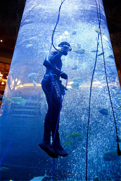 1207_Diver in the tank