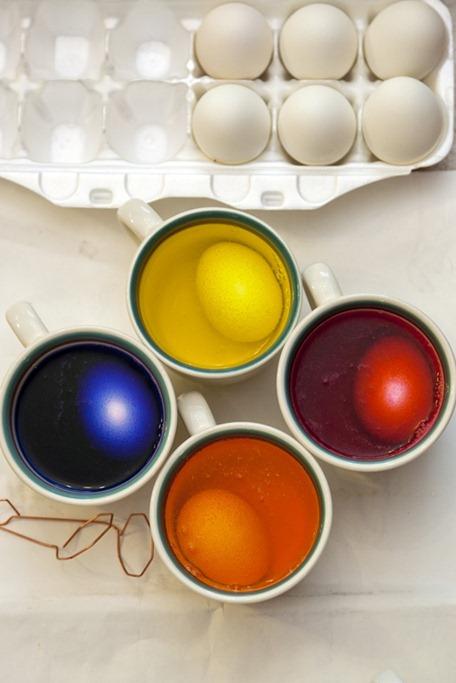 2047_Eggs in Dye