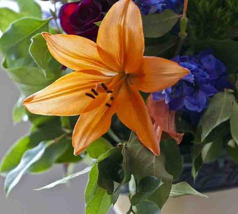 4216_Flower Arrangement