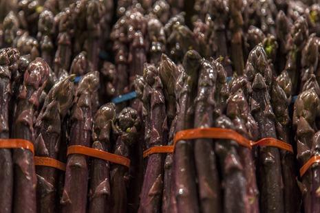 4934_Purple Asparagus