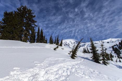 6264_Mt Rainier