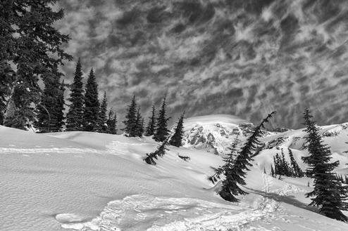 6267_Mt Rainier-BW