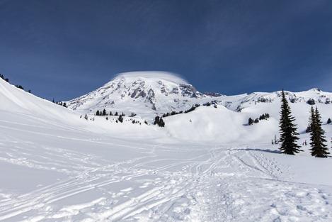 6308_Mt Rainier