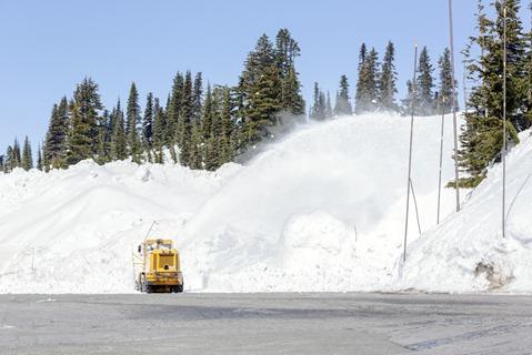 94C3268_Snow Blower