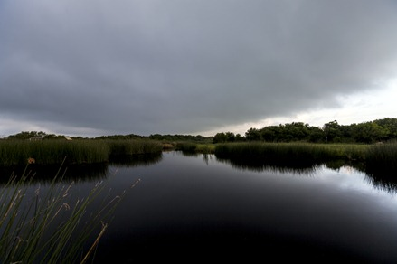 7699_Stormy Morning Big Slough