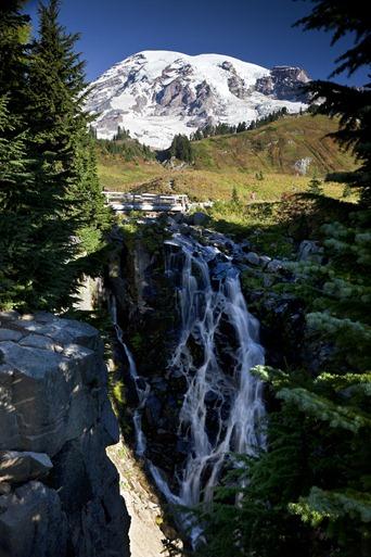 9122_Mt Rainier at Paradise