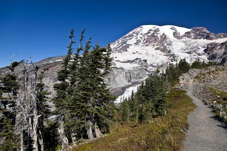 9177_Path To The Mountain