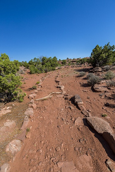 C2C7648_Trail To Anticline Overlook