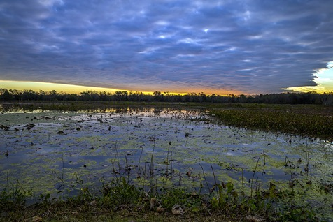 H5T3545_40-Acre Sunrise