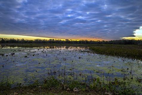 H5T3545_40-Acre Sunrise
