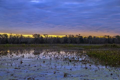 H5T3548_40-Acre Sunrise