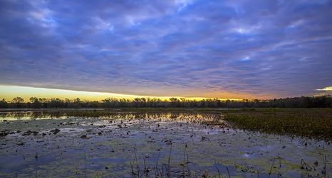 _U9A2189_40-Acre Lake Sunrise