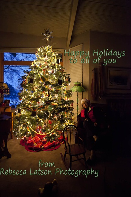 5009_Happy Holidays Card