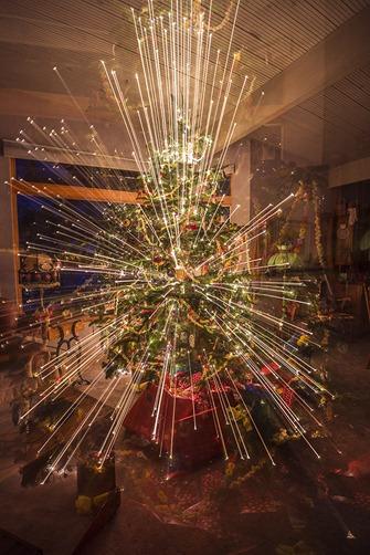 U9A0620_Christmas Tree Magic