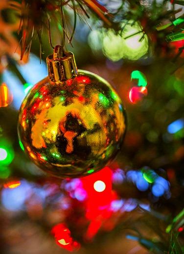 Christmas Ball Reflection