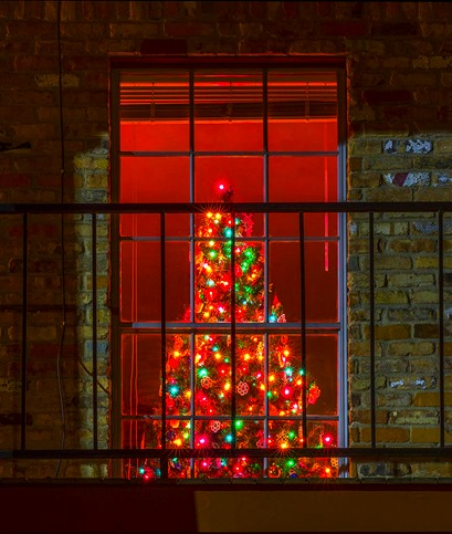Christmas Tree In The Window