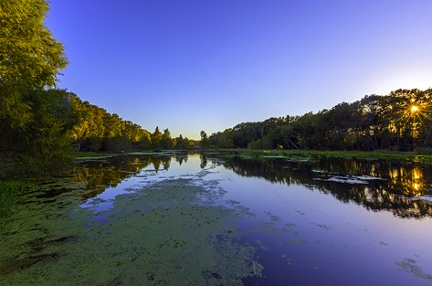 Evening At Creekfield Lake1