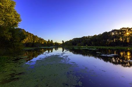 Evening At Creekfield Lake