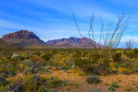 The Chisos Mountains And Chihuahuan Desert
