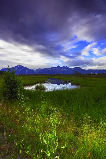 Chugach Mountain Reflection