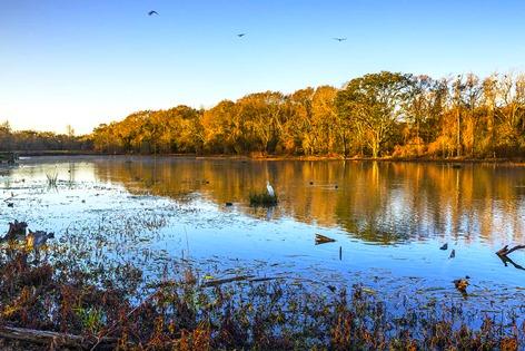 Lovely Morning On Creekfield Lake