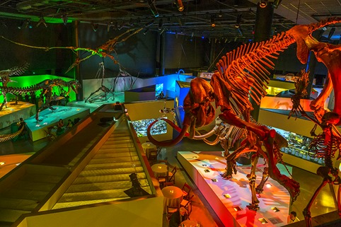 Hall Of The Dinosaurs #1