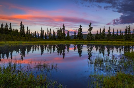 Morning Reflection on Nugget Pond - HORIZ