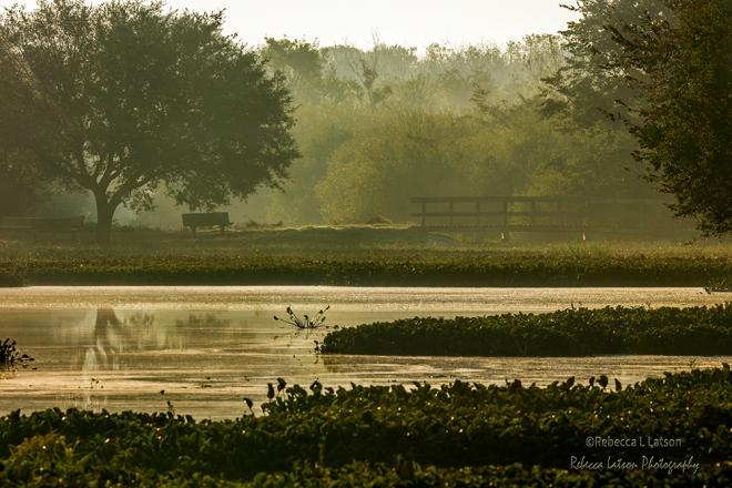 Hazy Morning On The Lake