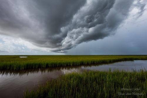Storm Front On The Refuge