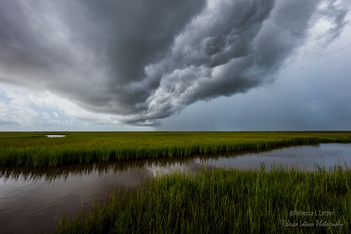 Storm Front On The Refuge