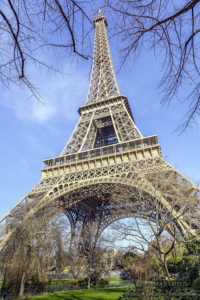 Morning Light On The Eiffel Tower