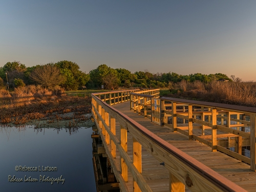 Boardwalk Over Big Slough
