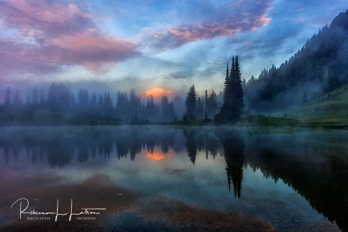 Foggy Sunrise At Tipsoo Lake - Closer