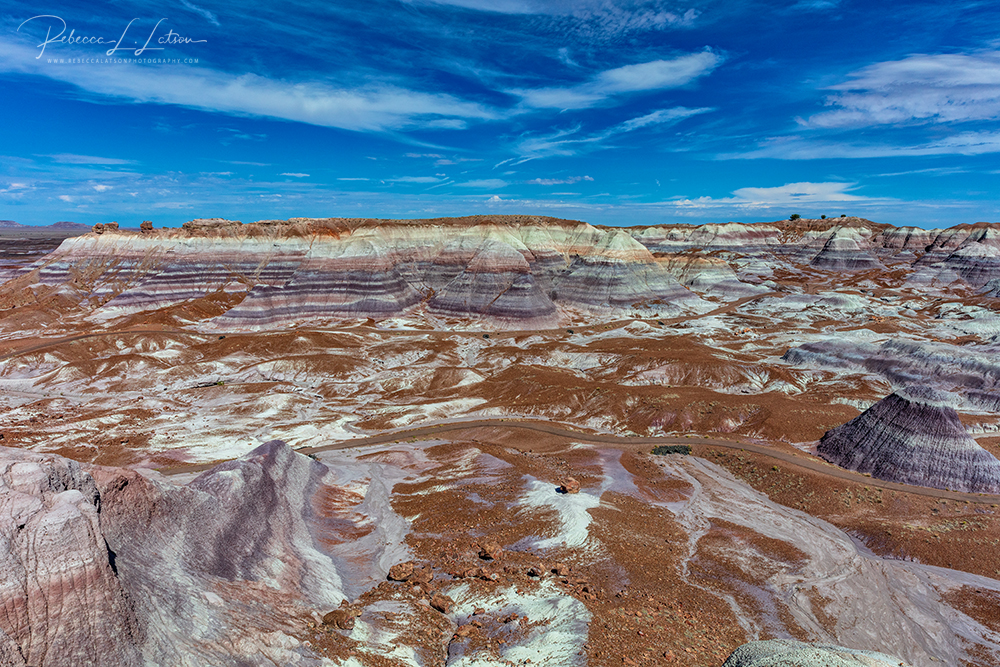 Looking Over Blue Mesa Trail