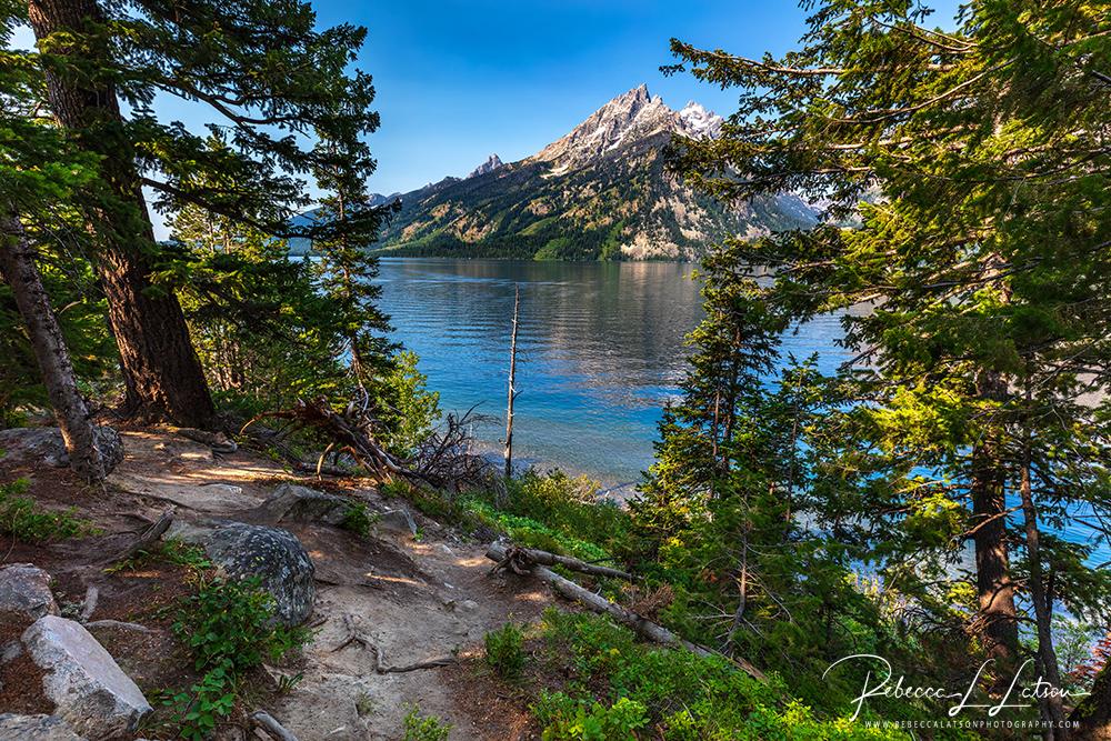 Jenny Lake Scenery