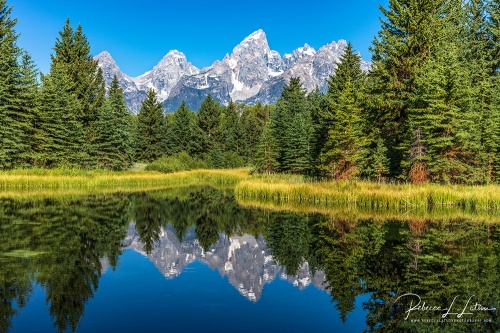 Morning At Schwabacher Landing