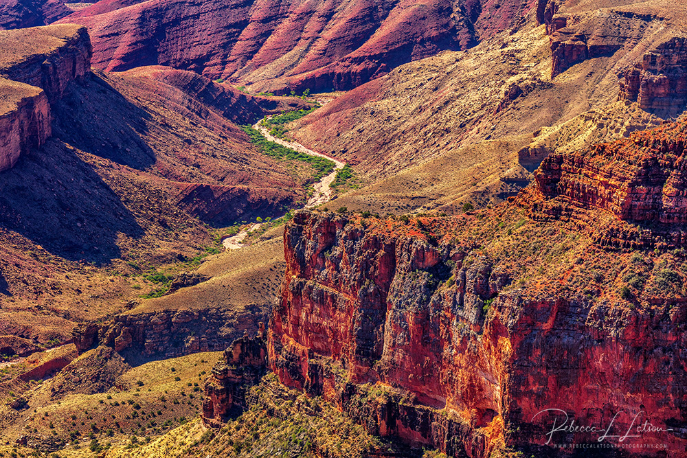 Interior Canyon Scenery At Walhalla Overlook