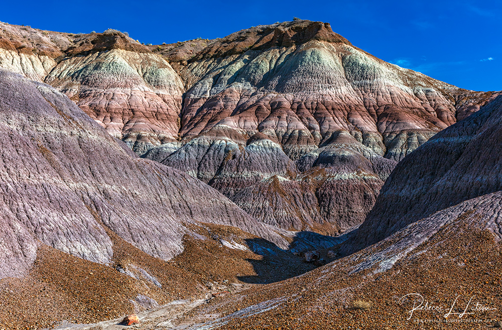 Blue Mesa Colors Layers And Erosion