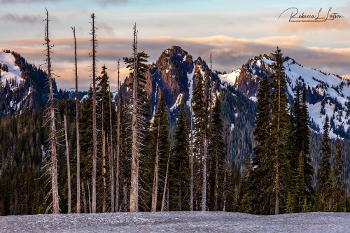 Sunrise Over The Tatoosh Range