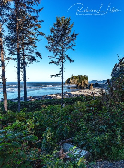 A Morning View Of Ruby Beach