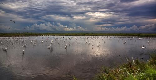Stormy Cross Trails Pond