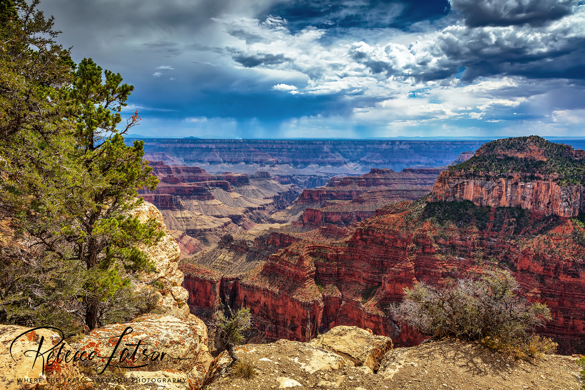North Rim Scenery On A Summer Afternoon