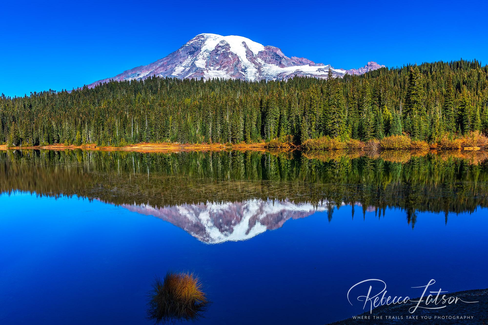 Reflection Lake Scenery