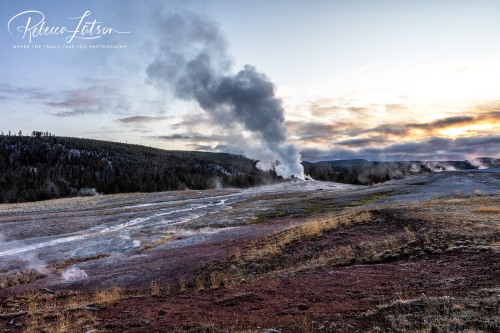 Early Morning Activity At Old Faithful