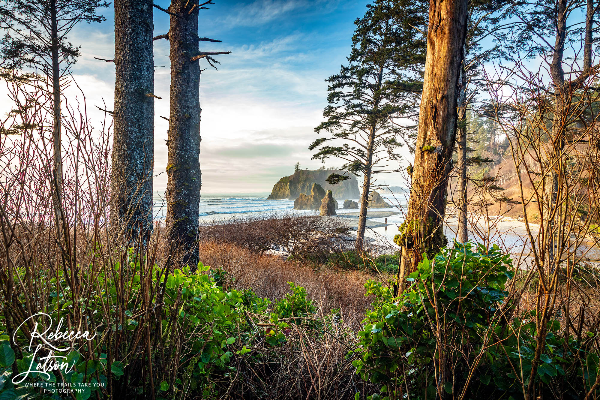 A View Of Ruby Beach