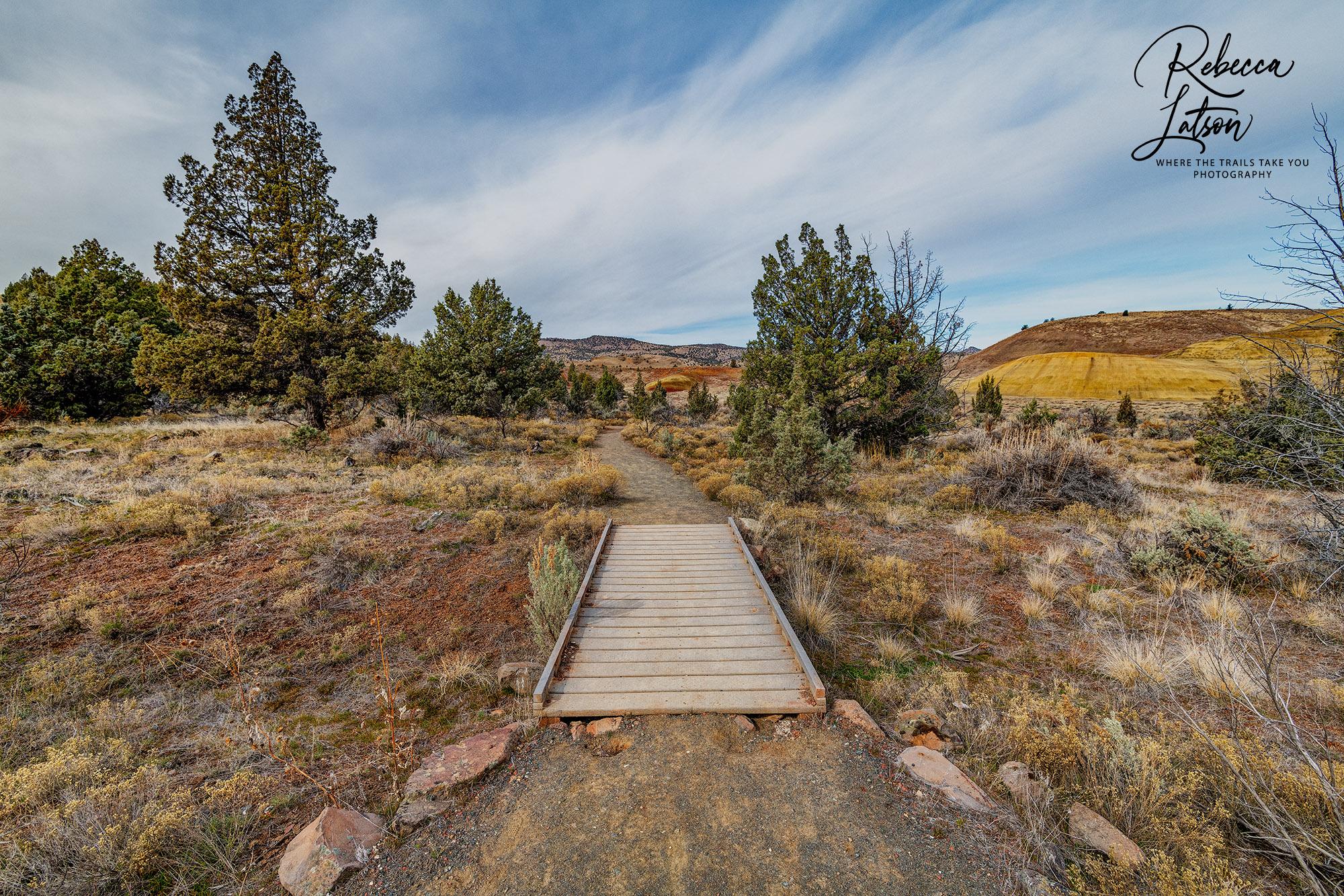 The Leaf Hill Trail