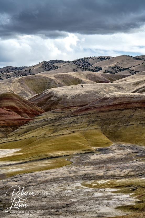 Painted Hills On An Overcast Day 2