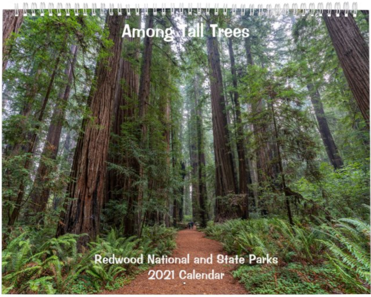 A 12-month 2021 wall calendar featuring stunning images taken during an autumn visit to Redwood National and State Parks in California
